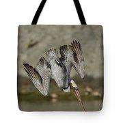 Brown Pelican Diving Tote Bag