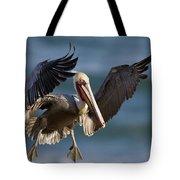 Brown Pelican Flying California Tote Bag