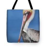 Brown Pelican Head Shot Tote Bag