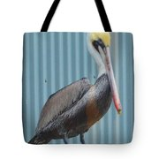 Brown Pelican II Tote Bag