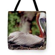 Brown Pelican Incubating Eggs Tote Bag