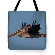 Brown Pelican Pelecanus Occidentals  Photo By Pat Hathaway 2007 Tote Bag