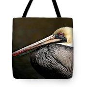 Brown Pelican Portrait Tote Bag