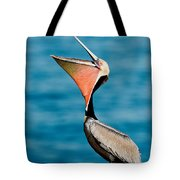 Brown Pelican Showing Pouch Tote Bag