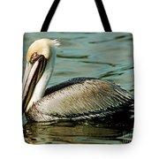 Brown Pelican Swimming Tote Bag