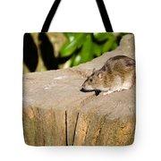 Brown Rat On Log Tote Bag