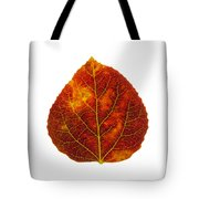 Brown Red And Yellow Aspen Leaf 1 Tote Bag