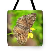 Brown Skipper Butterfly Square Tote Bag