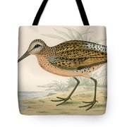 Brown Snipe Tote Bag