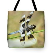 Brown Striped Double Winged Dragonfly Tote Bag