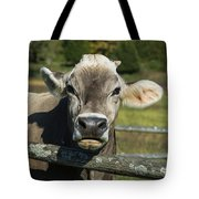 Brown Swiss Cow Tote Bag
