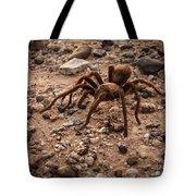 Brown Tarantula Tote Bag