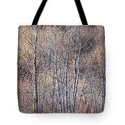 Brown Winter Forest With Bare Trees Tote Bag