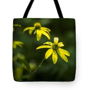 Browneyed Susan Tote Bag