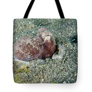 Brownstripe Octopus Burying Itself Tote Bag