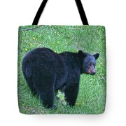Browsing Black Bear Tote Bag