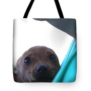 Brutus The II In Love Tote Bag