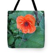 Bryan's Poppy Tote Bag