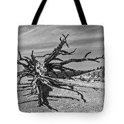 Bryce Canyon Tree Art Tote Bag