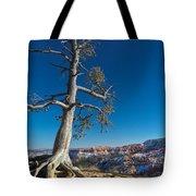 Bryce Tree Tote Bag