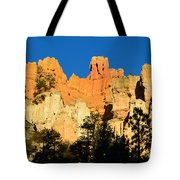 Bryce Canyon Panoramic Tote Bag