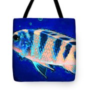 Bubbles - Fish Art By Sharon Cummings Tote Bag