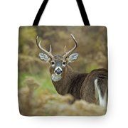 Buck Fever Tote Bag