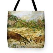 Buck Fight Tote Bag