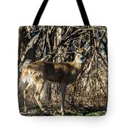 Buck In The Woods Tote Bag