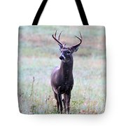 Buck Looking For A Doe Tote Bag