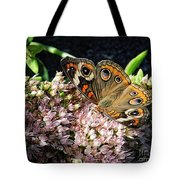 Buckeye Butterfly On Sedum Tote Bag