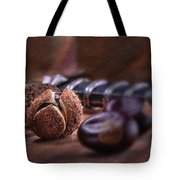 Buckeye Nut Still Life Tote Bag by Tom Mc Nemar