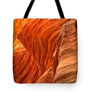 Buckskin Fiery Orange Tote Bag
