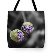 Budding Alliums Tote Bag