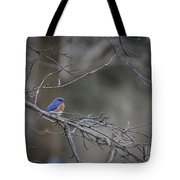 Budding Bluebird Tote Bag