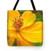 Budding Bouquet Tote Bag
