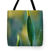 Budding Iris Tote Bag