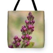 Budding Lilac 4 Tote Bag