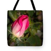 Budding Pink Rose Tote Bag