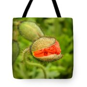 Budding Poppy Tote Bag