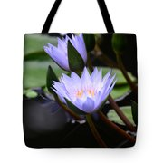 Budding Purple Water Lilies Tote Bag