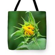 Budding Sunflower Tote Bag