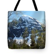 Buds And Glaciers  Tote Bag
