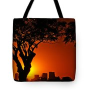 Buenos Aires At Sunset Tote Bag