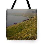 Buffalo   #0237 Tote Bag