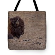 Buffalo And Birds   #2236 Tote Bag