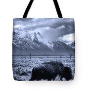 Buffalo And Mountain In Jackson Hole Tote Bag