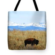 Buffalo And The Rocky Mountains Tote Bag