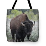 Buffalo Bird Tote Bag