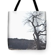 Buffalo Breath In The Winter Air Tote Bag